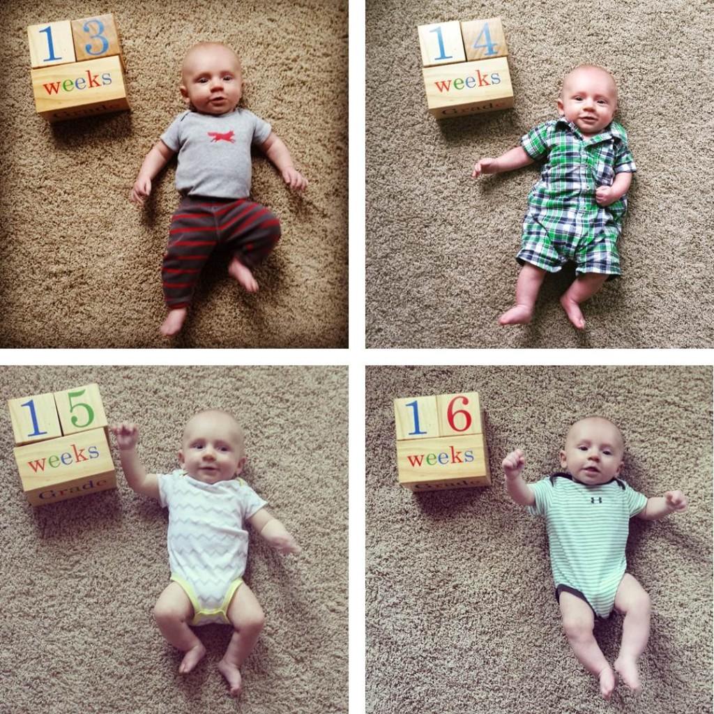Bryce 13-14-15-16 weeks