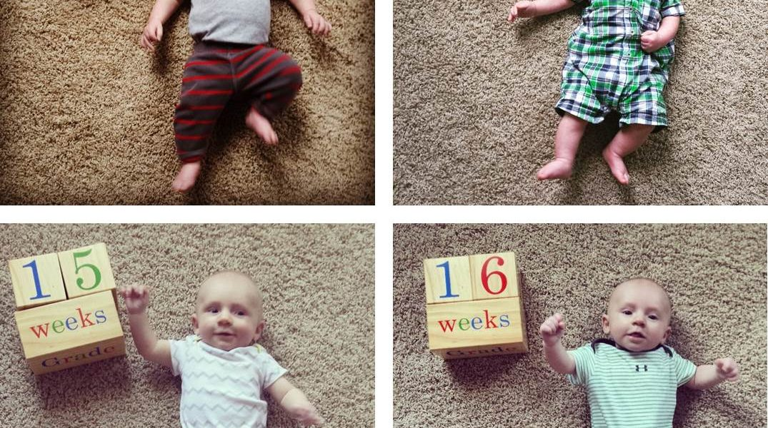 Bryce: 4 Month Update